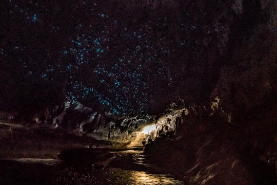 Waipu Caves