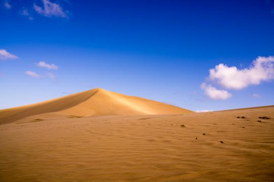 Sandboarding at Te Paki Giant Sand Dunes