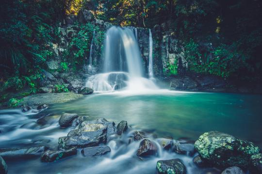 Drive the 309 road to Waiau Falls