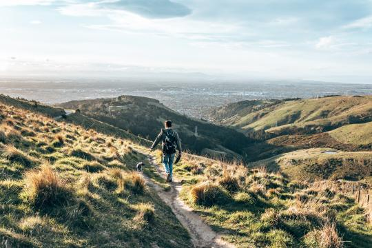 Enjoy the view from Port Hills