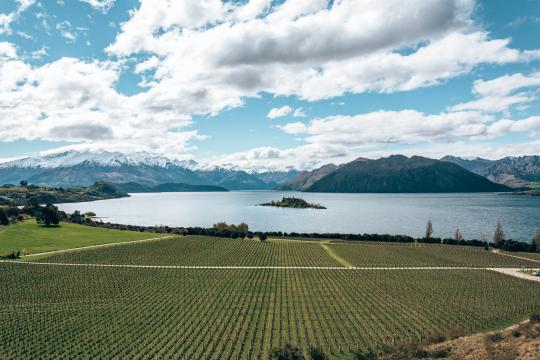Enjoy the views over Lake Wanaka