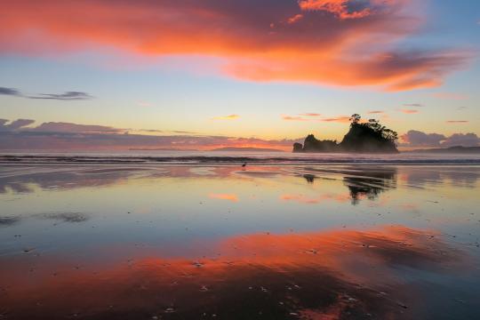 Whangapoua & New Chums Beach